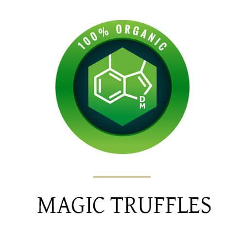 Truffes magiques